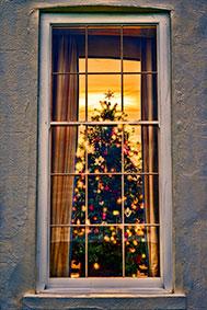 Tewkesbury-Park---Christmas-Tree