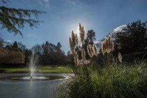 Hawkstone Hall_Gardens